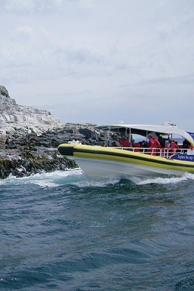 Bruny Island Cruises Salamanca Wharf Hotel